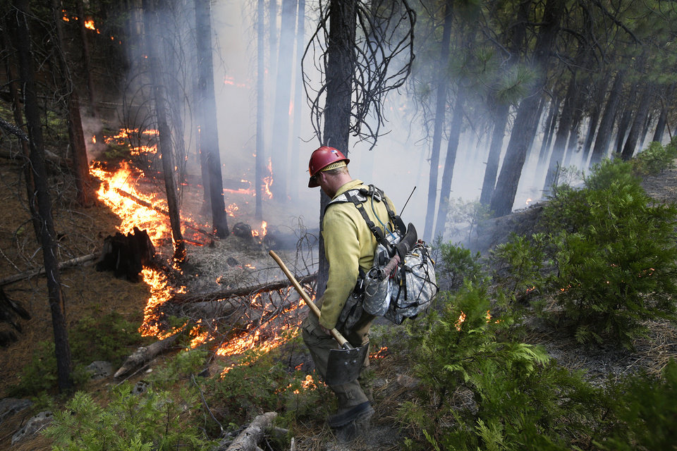 Firefighter Russell Mitchell monitors a back burn during the Rim Fire near Yosemite National Park, Calif., on Tuesday, Aug. 27, 2013. Unnaturally long intervals between wildfires and years of drought primed the Sierra Nevada for the explosive conflagration chewing up the rugged landscape on the edge of Yosemite National Park, forestry experts say. The fire had ravaged 282 square miles by Tuesday, the biggest in the Sierra's recorded history and one of the largest on record in California. (AP Photo/Jae C. Hong)