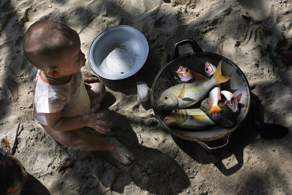 Photo - In this Sunday, Feb. 9, 2014 photo, a Moken child, nomads of the sea, looks at a pan with freshly caught fish for lunch on Island 115 in Mergui Archipelago, Myanmar. The child is a part of a Moken group of several families spending 10 days hunting for squid and whatever else they can collect before returning to their village on another island toward Myanmar's southwestern coast with a lacework of 800 islands, what is known as the Lost World. Isolated for decades by the country's former military regime and piracy, the Mergui archipelago is thought by scientists to harbor some of the world's most important marine biodiversity and looms as a lodestone for those eager to experience one of Asia's last tourism frontiers before, as many fear, it succumbs to the ravages that have befallen many of the continent's once pristine seascapes. (AP Photo/Altaf Qadri)