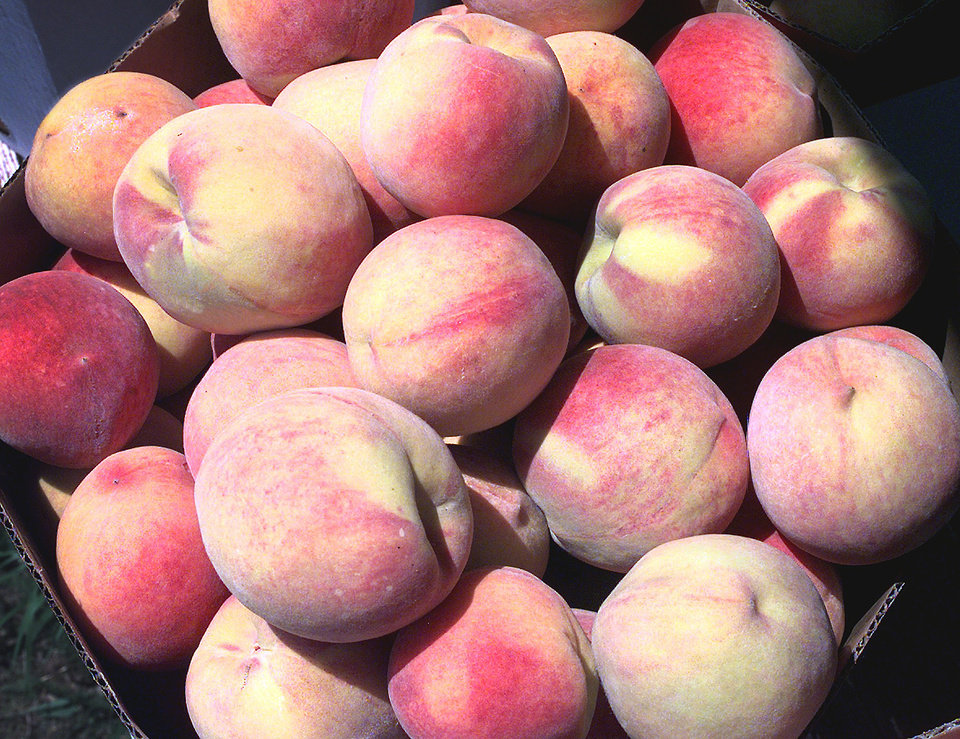Photo - Peaches, like other fruits and vegetables, may have residues from dozens of pesticides.The oKLAHOMAN ARCHIVE