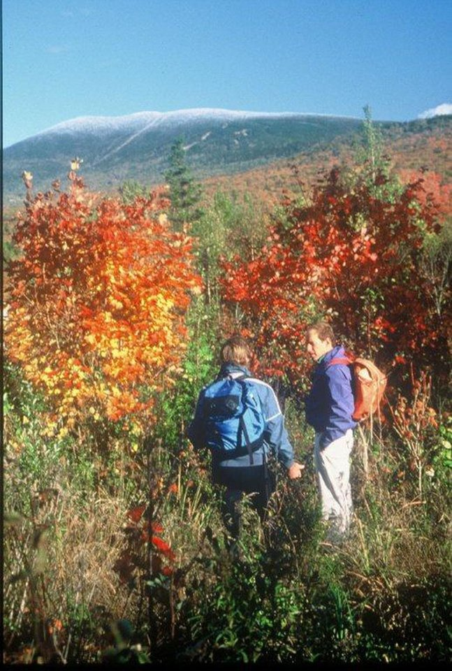Photo - Hikers enjoy colorful autumn leaves in the rolling mountains of western Maine. Photo courtesy of Rangeley Lakes Chamber of Commerce.