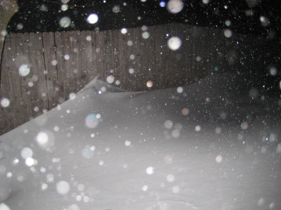 Snow in backyard more than halfway up our 6 foot fence.  Submitted by Lauren Estrada.