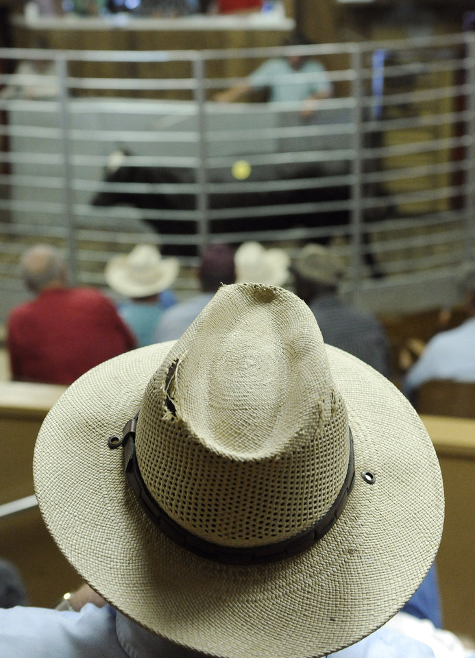 Photo -   File - In this July 28, 2011 file photo, a man watches a cattle auction at the Lockhart Livestock Auction arena in Lockhart, Texas. This year, cowboys statewide watched closely a recent auction in Frankston to see how the cattle sold. The price of the heifers, the number of buyers, the amount of sales, and the attitude of the ranchers is one of the first real indications of how quickly Texas recovers from the impacts of a historic drought _ and at what cost. (AP Photo/Pat Sullivan, File)
