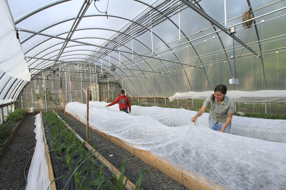 Photo - Stephanie Gaiser, right, and her son, Seth, place a cover for added protection over a raised bed planted with eggplant inside the family's seasonal high tunnel on Friday, May 23, 2014, in Palmer, Alaska. The USDA's Natural Resource Conservation Service offers financial assistance to growers using the tall hoop houses to extend growing seasons, and has awarded more funding to Alaska for them than any other state. (AP Photo/Dan Joling)