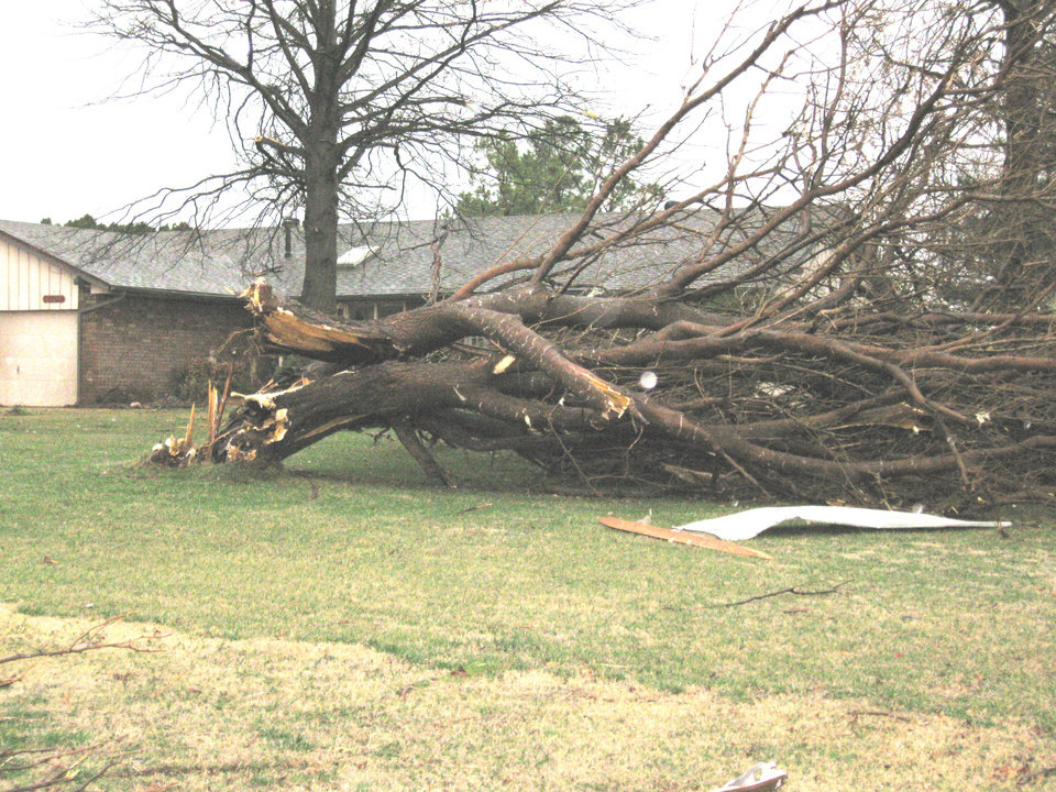 Photo - STORM / TORNADO / DAMAGE: A tree was uprooted in the front lawn of a house in the Big Cedar housing addition.. PHOTOS BY JOHN A. WILLIAMS, THE OKLAHOMAN    ORG XMIT: 0902111549189519