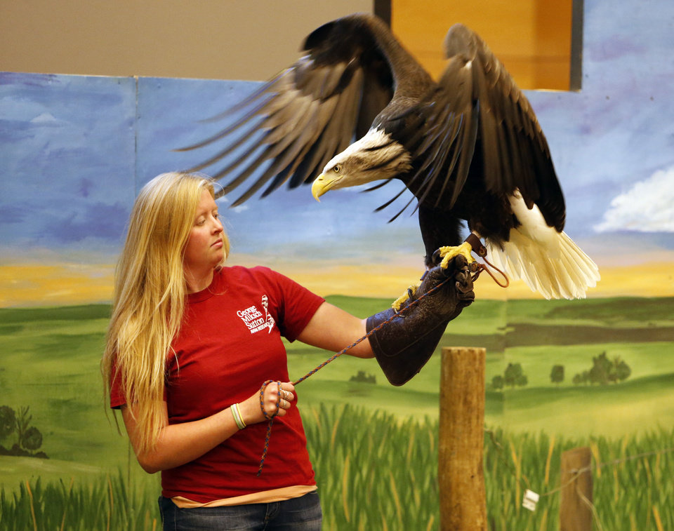 Lindsay Stedman, an intern with the George Miksch Sutton Avian Research Center, holds Fiona the bald eagle as patrons take photographs during spring break activities at the Sam Noble Oklahoma Museum of Natural History. Photo by Steve Sisney, The Oklahoman  <strong>STEVE SISNEY -   </strong>