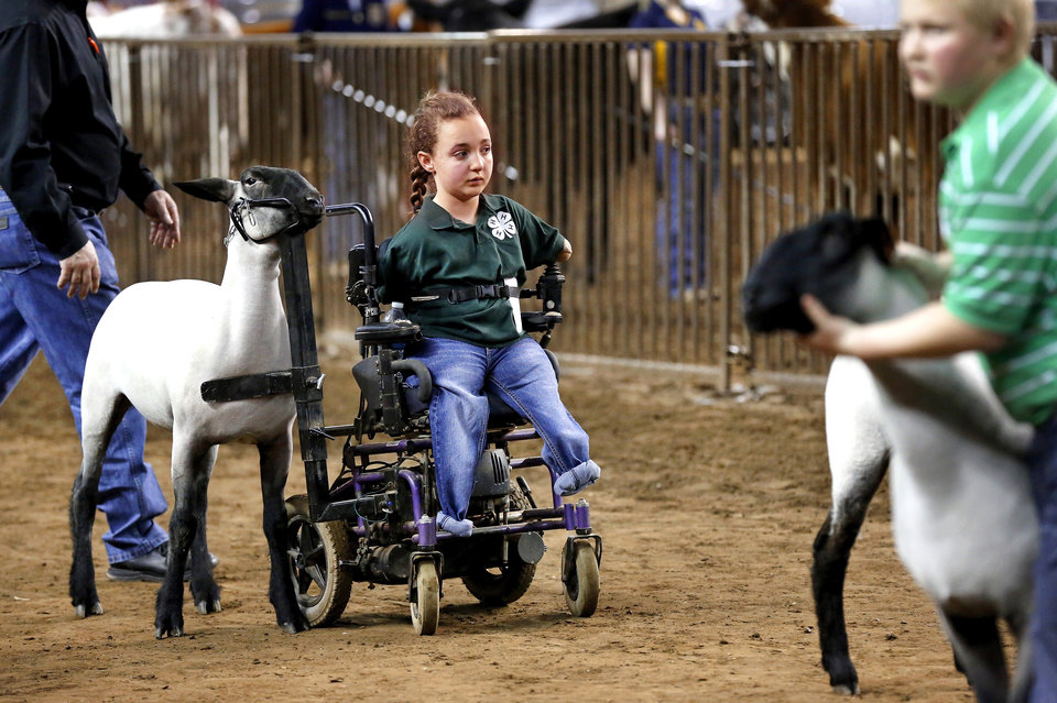 Photo - Shelby Frost, who is unable to walk because of a birth defect, uses her motorized wheelchair, which has been adapted, to allow her to show her sheep at the Oklahoma Youth Expo at State Fair Park on Tuesday,   March 18, 2014.  Frost, 11, is a member of Mulhall-Orlando 4H Club. She has been showing her sheep in competitions for three years. Photo by Jim Beckel, The Oklahoman
