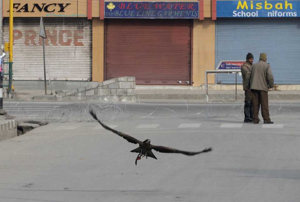 An eagle flies low at a deserted market as policemen guard on the fourth consecutive day of curfew imposed after the execution of a Kashmiri man convicted in a deadly 2001 attack on India's Parliament in Srinagar, India, Tuesday, Feb. 12, 2013. Mohammed Afzal Guru was hanged in New Delhi early Saturday. Ahead of the execution, authorities had anticipated anti-India protests and ordered people in most of the Indian-held part of the disputed Kashmir region to remain indoors indefinitely. (AP Photo/Mukhtar khan)