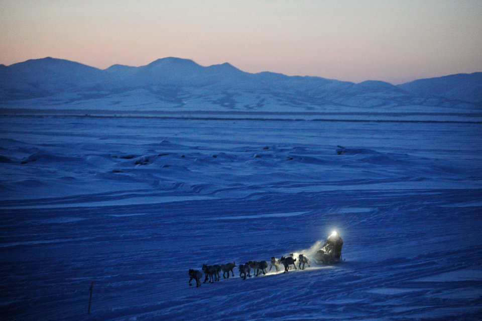 FILE - Dallas Seavey pulls in to the checkpoint in Unalakleet, Alaska, during the Iditarod Trail Sled Dog Race on March 11, 2012. (AP Photo/Anchorage Daily News, Marc Lester, File)