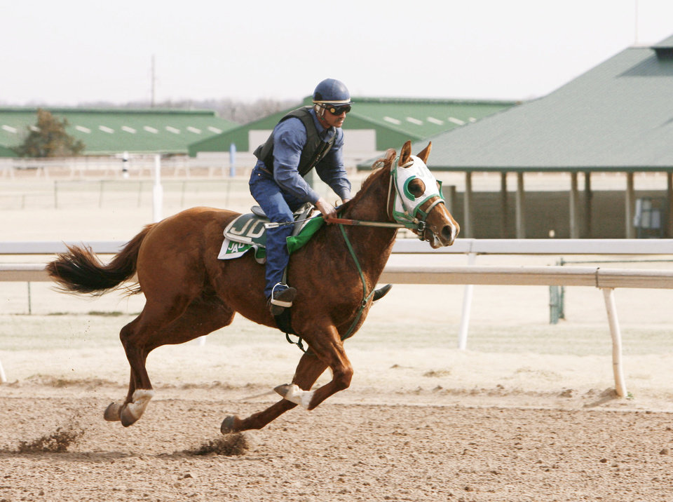 Photo - A trainer puts a horse through it's paces at Remington Park in Oklahoma City on Friday.  Photo BY PAUL HELLSTERN, THE OKLAHOMAN