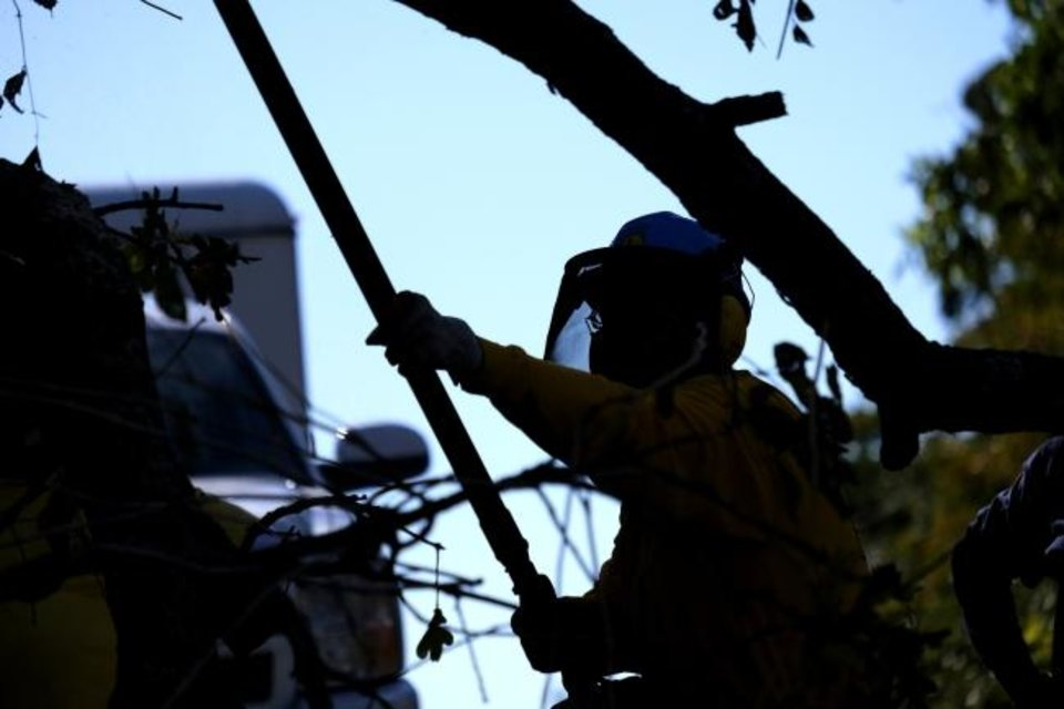 Photo -  An Oklahoma Baptists Disaster Relief team member works on tree limb removal on Friday in Bethany. [Doug Hoke/The Oklahoman]