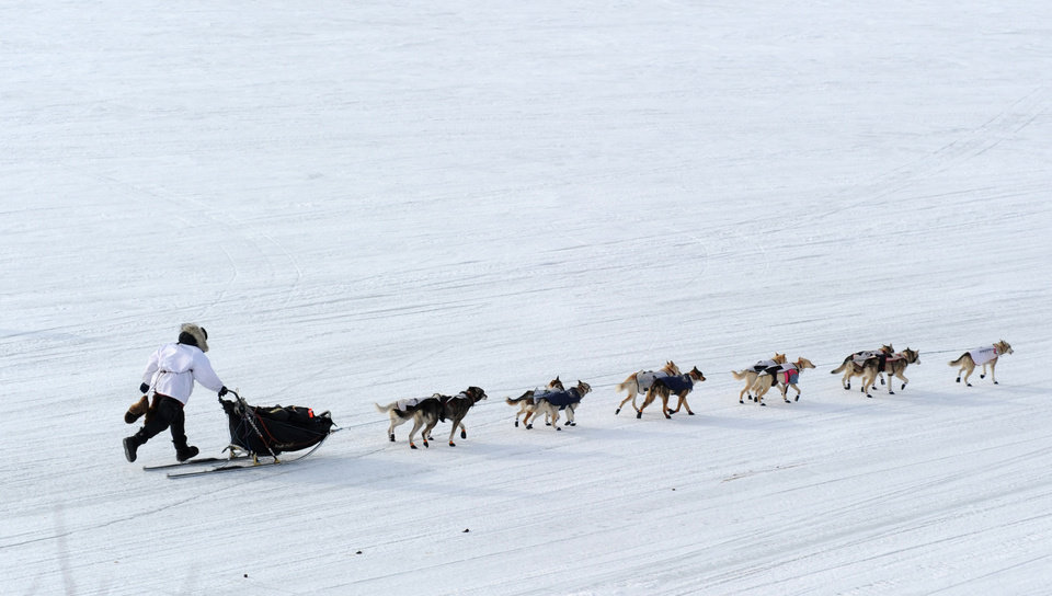 Photo - Iditarod musher Aliy Zirkle, from Two Rivers, Alaska, leaves in 2nd place from the White Mountain checkpoint during the 2014 Iditarod Trail Sled Dog Race on Monday, March 10, 2014. (AP Photo/The Anchorage Daily News, Bob Hallinen)