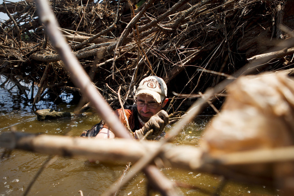 Chris Pulchny maneuvers his way into a beaver dam in the Cimarron River near Stillwater on Saturday, July 9, 2011. The group was looking for catfish to enter into the 12th Annual Okie Noodling Tournament in Pauls Valley, Okla. Photo by Zach Gray, The Oklahoman ORG XMIT: KOD