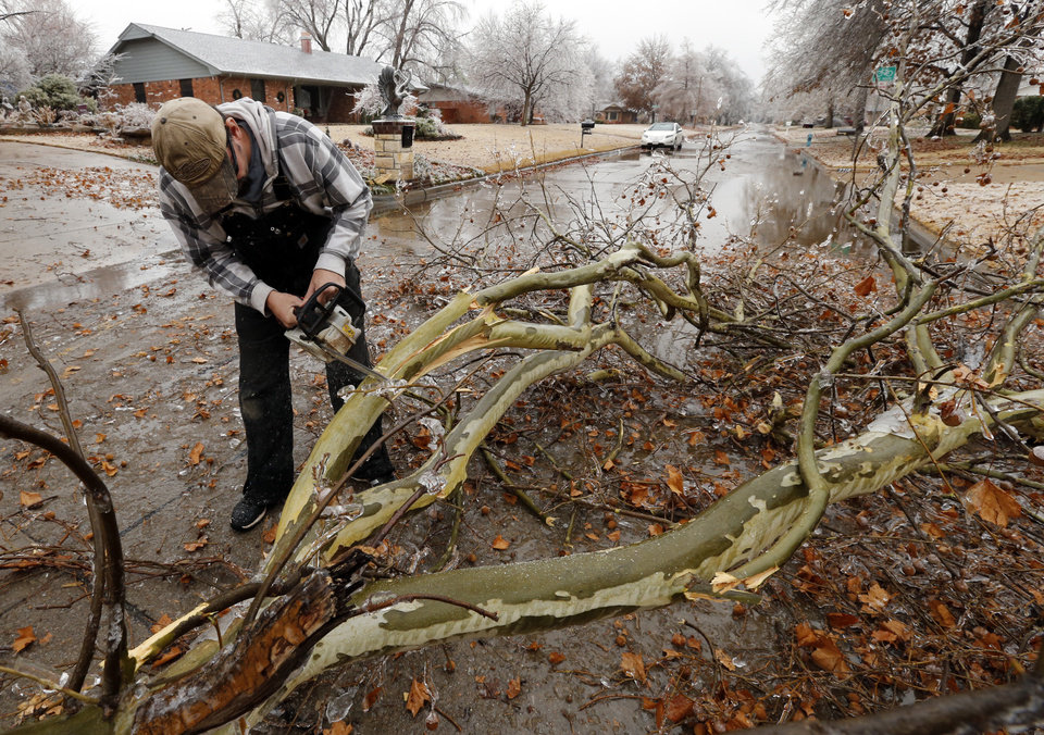 Photo - Jeffrey Powell with the City of Norman, cuts a tree branch that fell across Pickard Street after a winter storm coated trees with a thick layer of ice on Saturday, Dec. 21, 2013 in Norman, Okla.  Photo by Steve Sisney, The Oklahoman