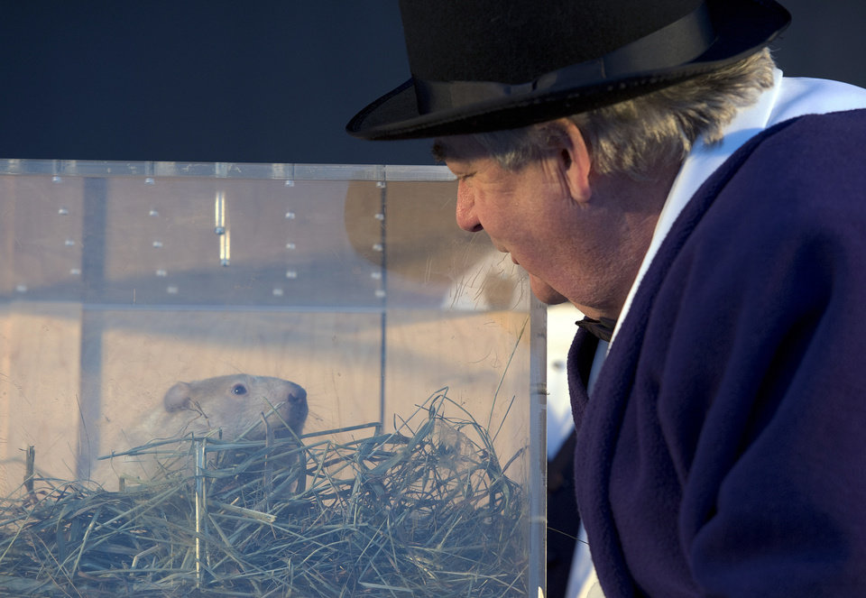 Photo - Wiarton, Ontario, Mayor John Close listens to groundhog Wiarton Willie's weather prediction in Wiarton on Sunday, Feb. 2, 2014. The groundhog prognosticator predicted 6 more weeks of winter. (AP Photo/The Canadian Press,Frank Gunn)
