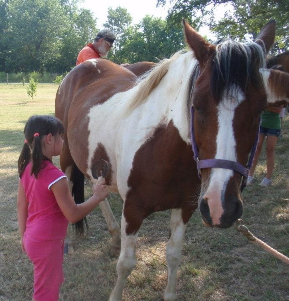 Photo - Alexa Vera grooms a horse at Wild Things Farm. (Photo by Happy Frazier)