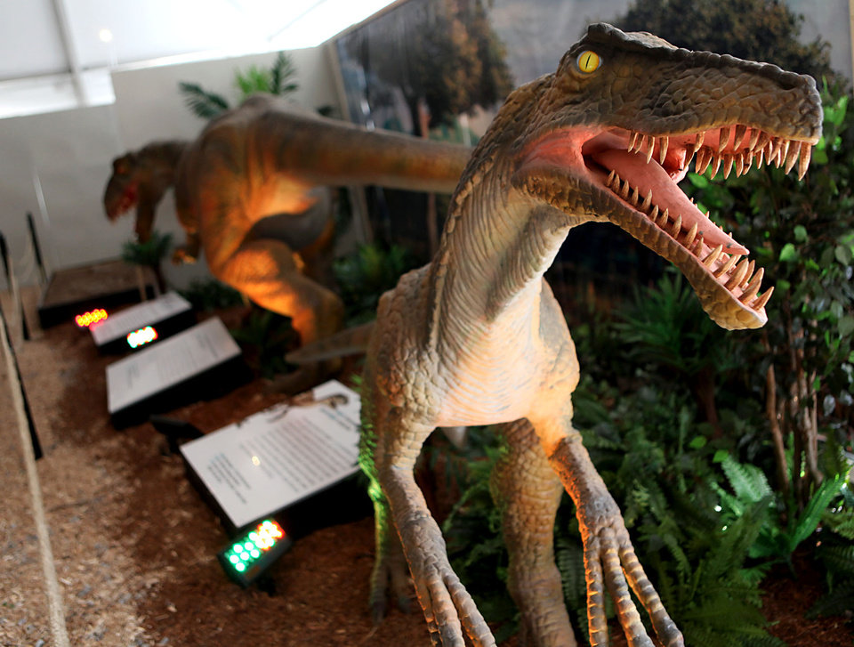 Photo - A Deinonychus (right) is one of the dinosaurs on display at a new exhibit at the Oklahoma City Zoo in Oklahoma City on Wednesday, March 11, 2008. By John Clanton, The Oklahoman ORG XMIT: KOD