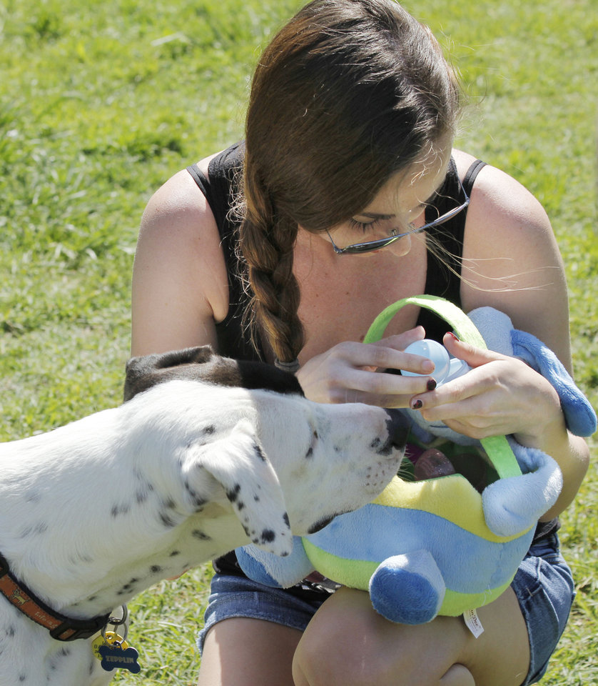 Photo - Above: Zepplin waits for a treat in an Easter egg held by Courtney Mills during Edmond's Hound Hunt at the dog park in Bickham-Rudkin Park.