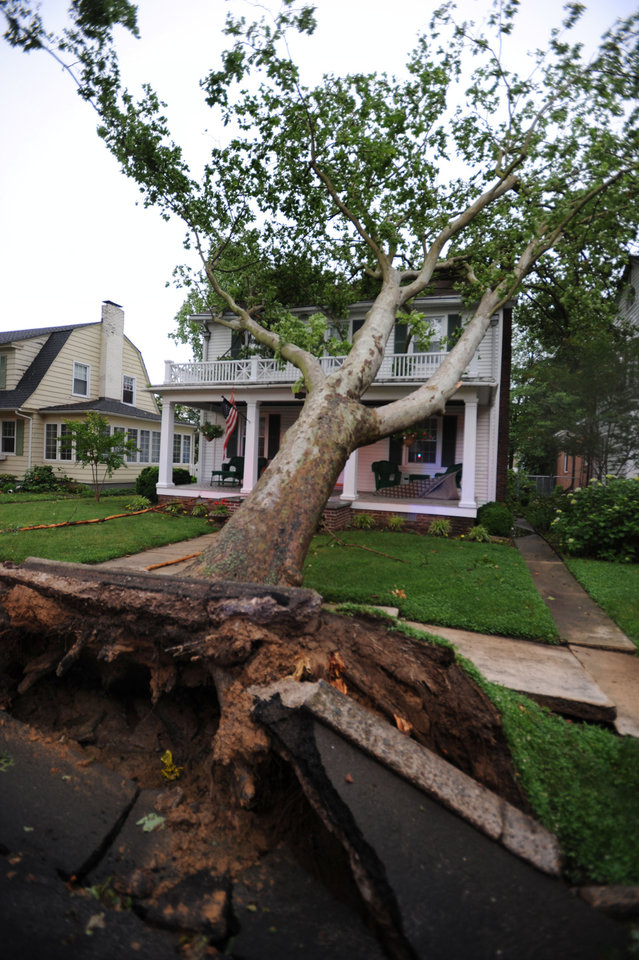 Photo - A Tree is uprooted during a thunderstorm damaging a house on the 600 block of N. Bradford St. Thursday, June 13, 2013 in Dover, Del. A massive storm system that started in the Upper Midwest and plowed across the country was hitting the Mid-Atlantic Thursday, causing widespread power outages and flash flooding, but still largely failing to live up to its fierce billing. (AP Photo/The Wilmington News-Journal, Gary Emeigh)  NO SALES