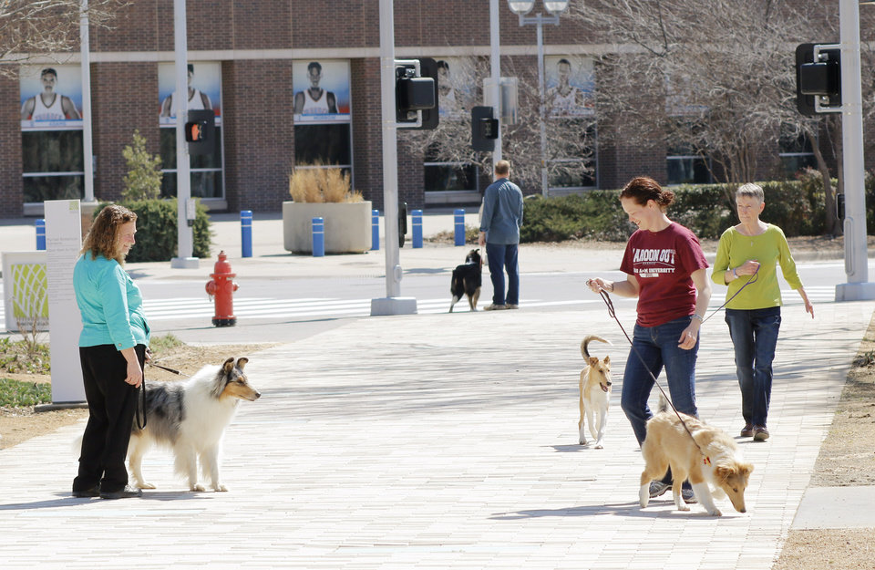 Photo - People in town at the Collie Club of America dog show at the Cox Convention Center in  Oklahoma City, walk their dogs in the Myriad Boatanical Gardens, Wednesday, March 11, 2015. Photo by Doug Hoke, The Oklahoman