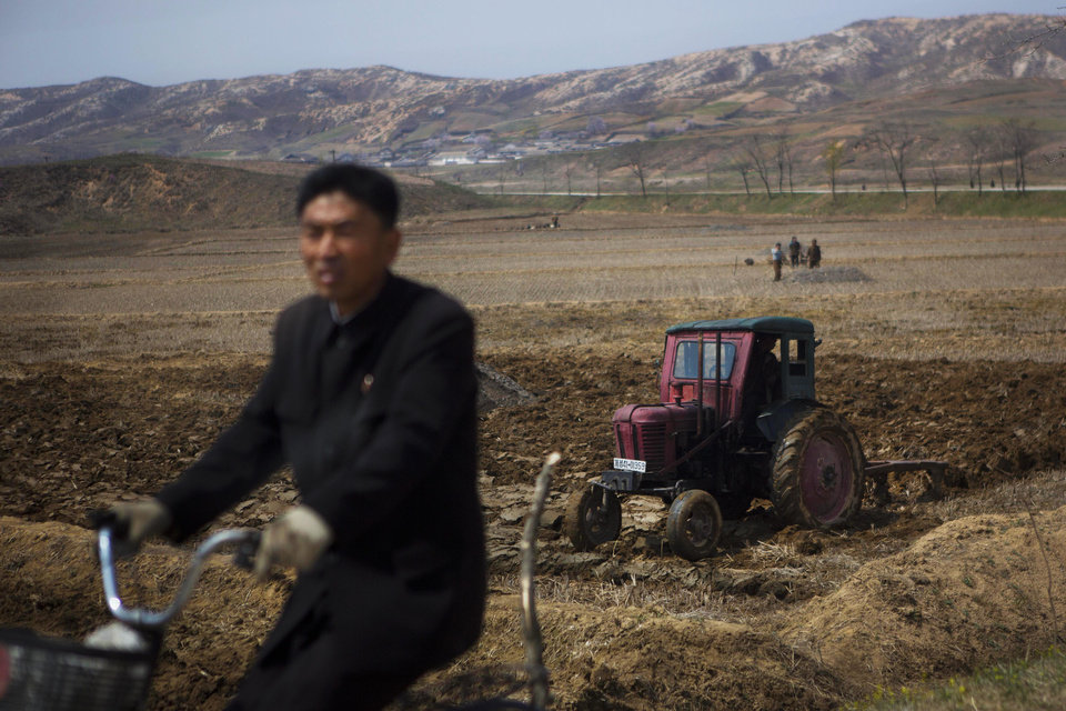 Photo - In this April 24, 2013 photo, a North Korean man passes by on a bicycle as a farmer in a tractor works in his field southeast of Kaesong, North Korea near the demilitarized zone that separates the two Koreas. (AP Photo/David Guttenfelder)