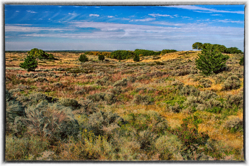"""Scrub Brush Prairie"" Image taken southeast of Woodward, Oklahoma looking north. Photo by Mark Meacham"