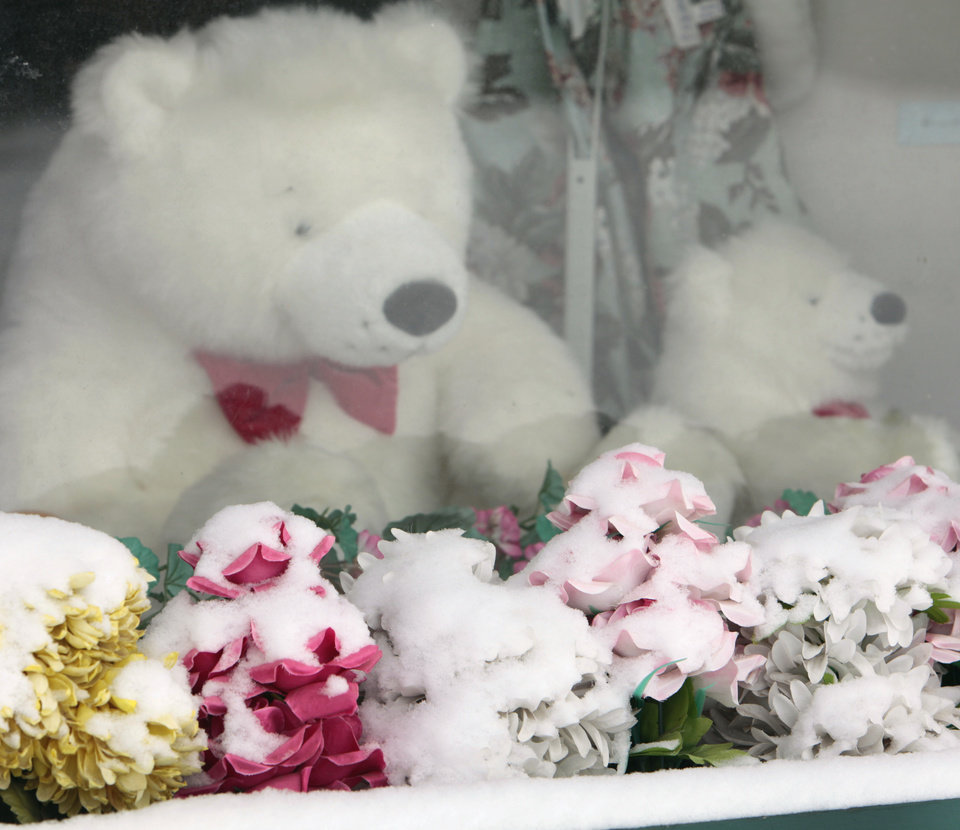 Flowers with snow on them on a window sill with stuffed polar bears at the Doll House Antiques in downtown Edmond, Friday, December, 6, 2013. Photo by David McDaniel, The Oklahoman