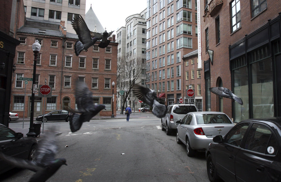 Pigeons hover as no traffic passes on House Street in downtown Boston Friday, April 19, 2013.  Mass transit was suspended while a suspect was hunted following bombings near the finish line of the Boston Marathon Monday.  (AP Photo/Bill Sikes) ORG XMIT: BX110