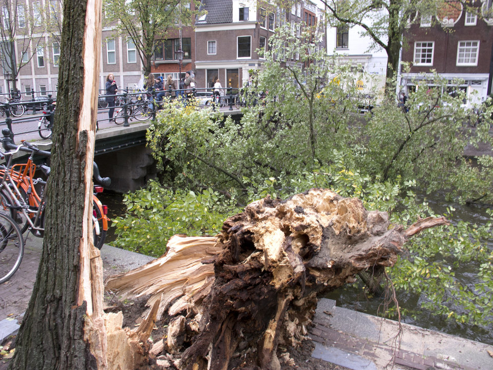 Photo - A fallen tree branch blocks Herengracht canal in Amsterdam, Monday, Oct. 28, 2013. A major storm with hurricane-force gusts lashed southern Britain, the Netherlands and parts of France on Monday, knocking down trees, flooding low areas and causing travel chaos. Dutch citizens were warned against riding their bicycles because of the high winds. Amsterdam police said a woman was killed when a tree fell on her in the city and advised people to stay indoors. (AP Photo/Margriet Faber)