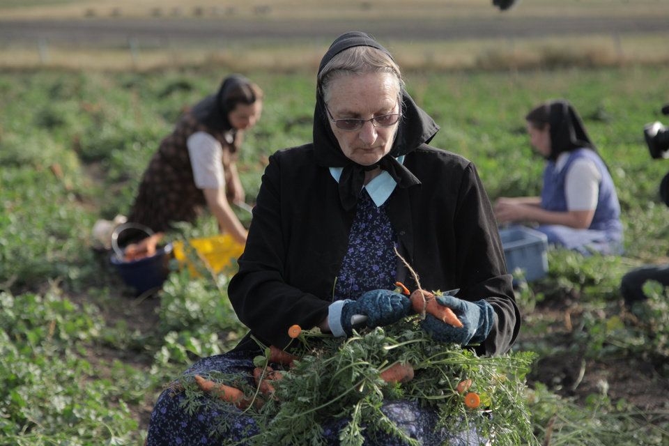 "This undated image released by National Geographic Channels shows Hutterite Judy Hofer picking carrots from the garden in King Colony, Mont. ""Meet the Hutterites,"" a National Geographic documentary series about a small religious colony in rural Montana, debuts Tuesday, May 29. (AP Photo/National Georgraphic, Ben Shank)"