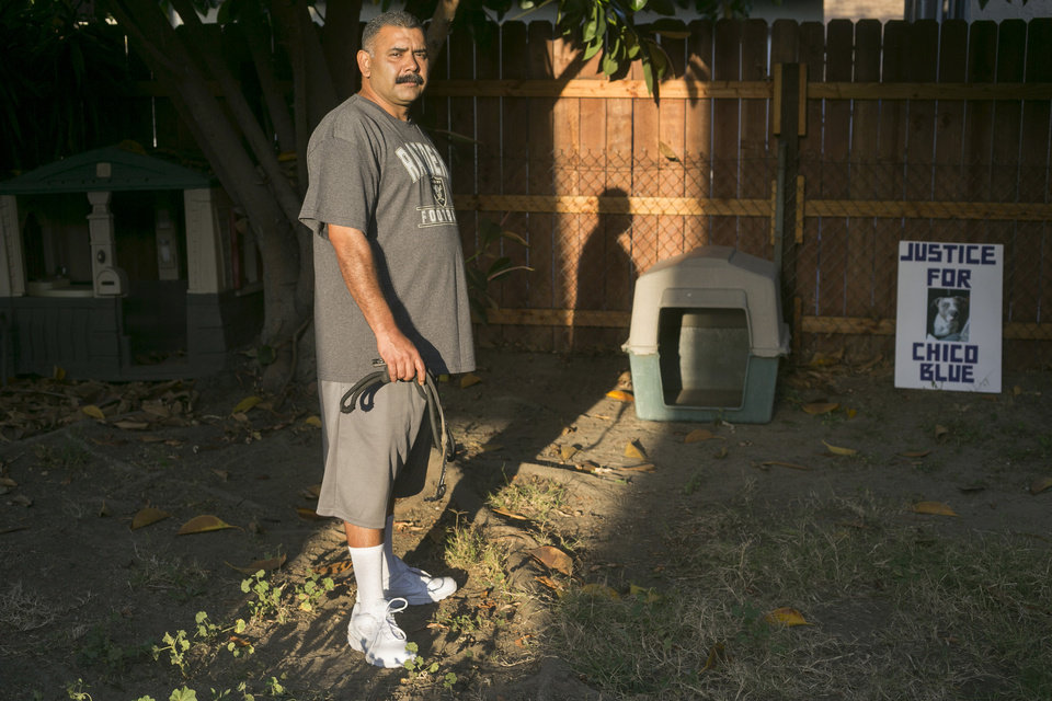 Photo - In this Monday, May 19, 2014 photo, former dog owner Arturo Gonzalez poses for a photo near his late dog's house at his home in Pico Rivera, Calif. Gonzalez's pit bull, Chico Blue, was fatally shot by sheriff's deputies 18 months ago when the deputies came to ask Gonzalez about a shooting that wounded his brother. The deputies say the dog foamed at the mouth while walking down the driveway. Feeling threatened by the dog, the deputies threw a chair, sprayed the dog with mace and shot him twice with a handgun. The dog bled to death in a patrol car. The majority of shootings in most U.S. police departments involve animals, usually dogs, and experts say a new series of videos can help change often quick-trigger decisions fueled by fear. (AP Photo/ Damian Dovarganes)