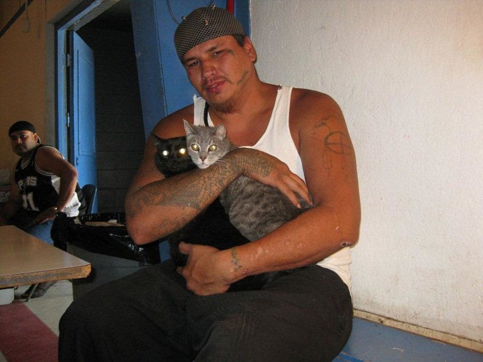 Photo - Right: At a clinic, a man waits with his two cats for their turn to be spayed. Photos provided