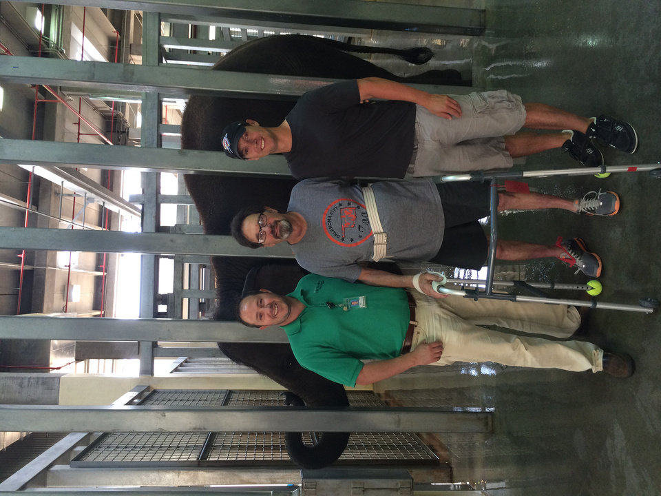 Photo -  Mac McCrory, center, poses with Cody Jones, a recreational therapist (left) and Nick Newby, pachyderm supervisor at the Oklahoma City Zoo during his first outing after leaving Integris Jim Thorpe Rehabilitation. Photo provided.