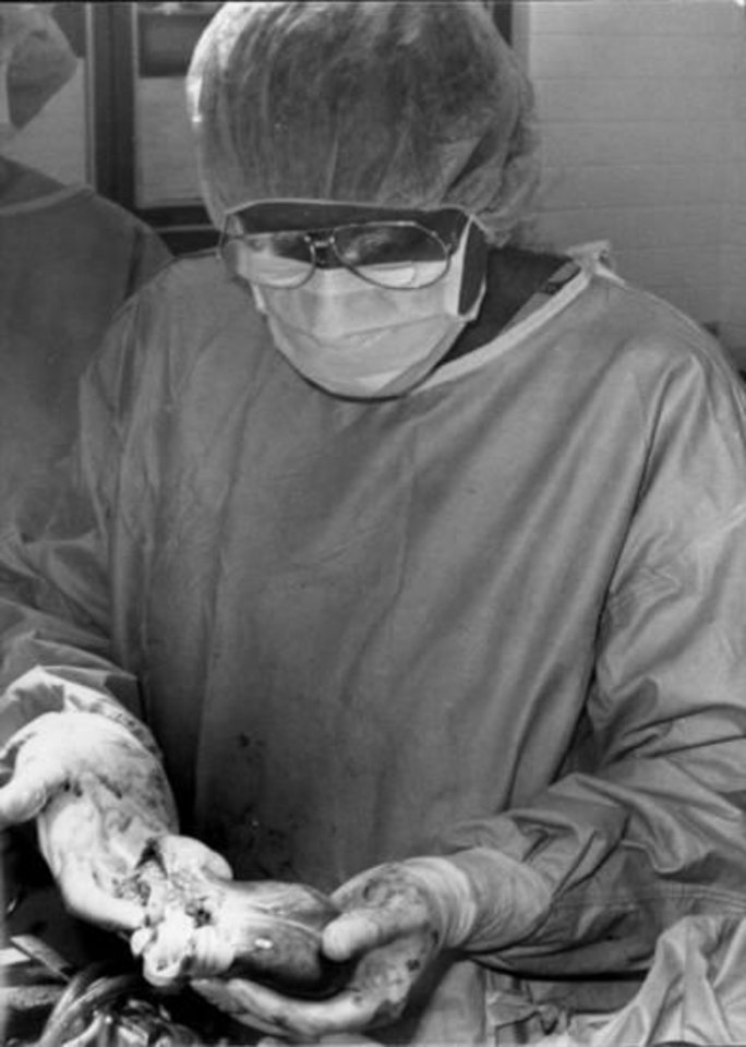 Photo -  Dr. Nazih Zuhdi holds the heart of a 14-year-old Georgia girl who died in a car accident. It was transplanted into Nancy Rogers, 45, in 1985. Rogers died of an infection less than two months after the surgery [Photo provided]