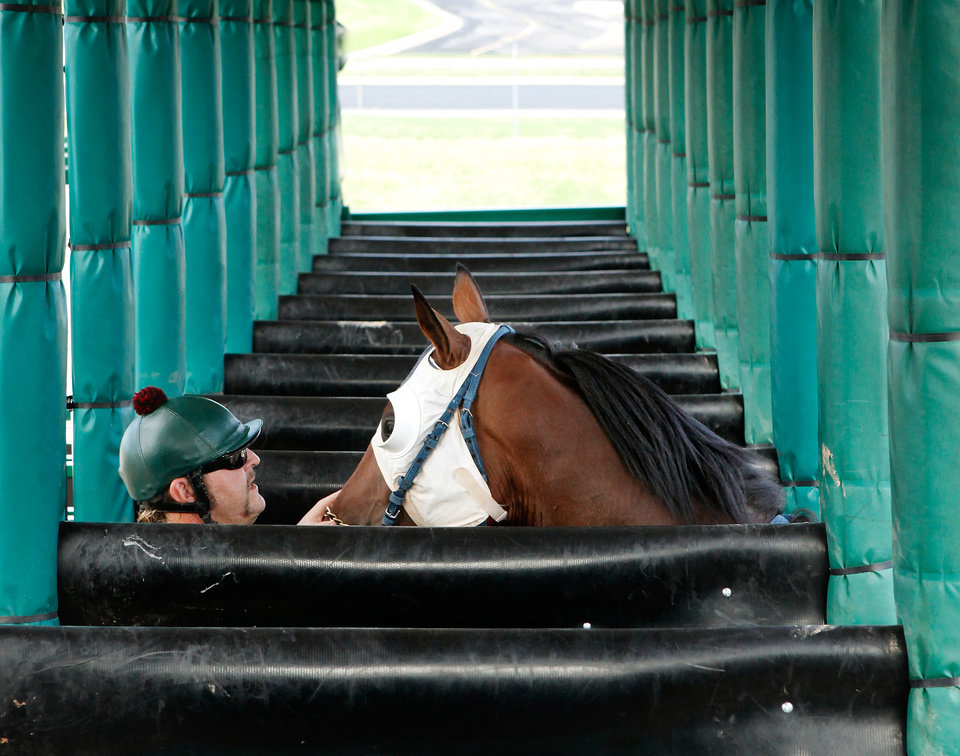 Ryan Andrews calms a horse as he brings it into a chute in the sttarting gate  at Remington Park Racetrack on Tuesday morning,  Aug. 16, 2011.  by Jim Beckel, The Oklahoman.