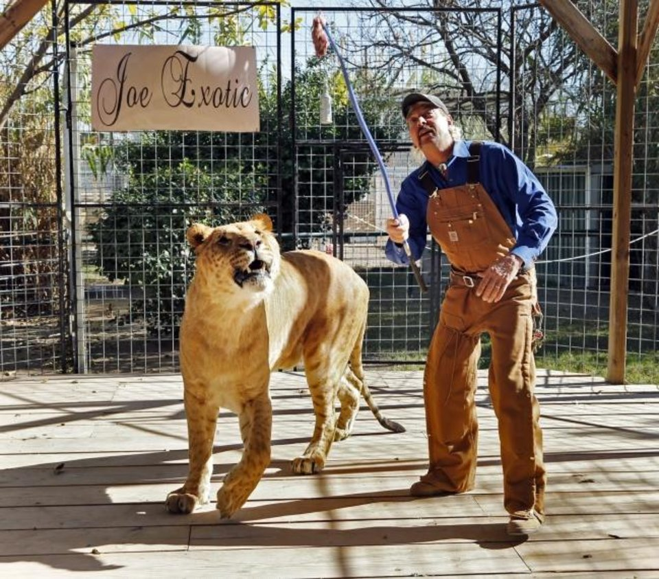 Photo -  Joe Exotic  works with Boco, the male Li-Liger in 2016 at Greater Wynnewood Exotic Animal Park in Wynnewood.  [The Oklahoman Archives]