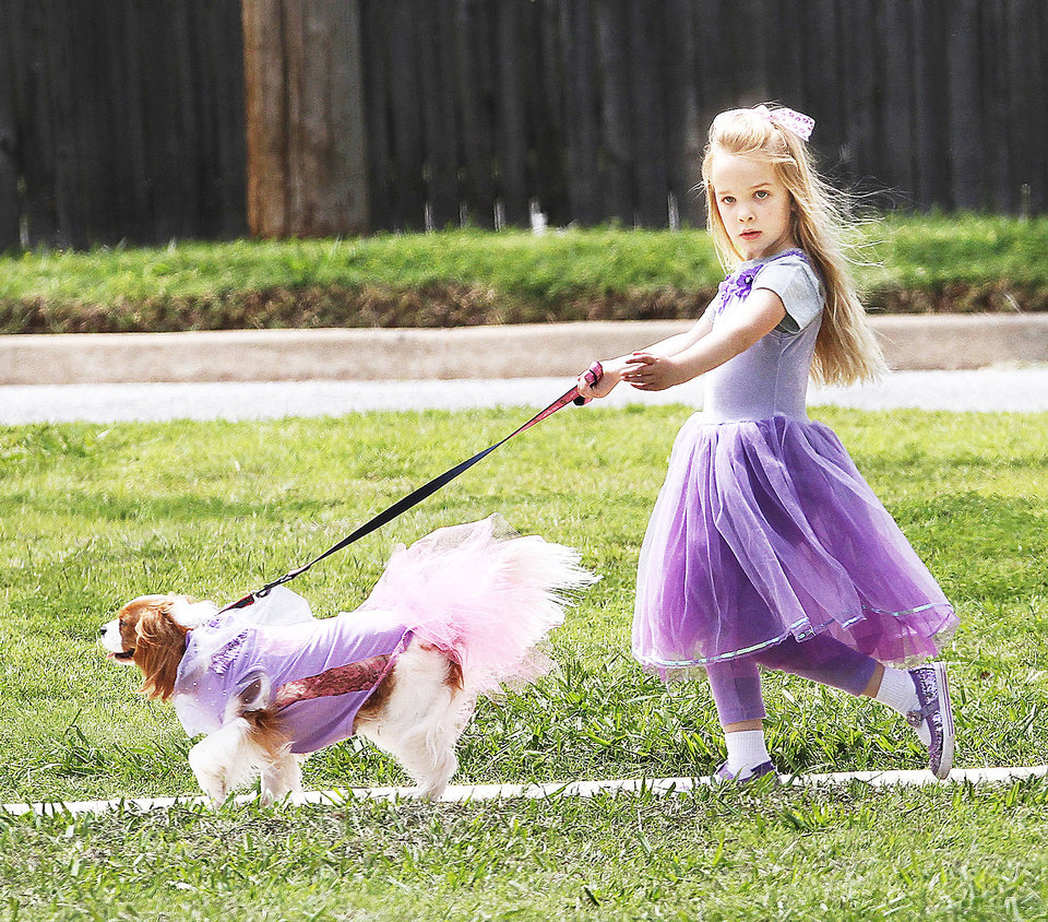 Photo - Charlotte Knight-Lester, 5, wears a matching outfit while walking her pet King Charles Spaniel, Fidget, around the park during the pet parade.