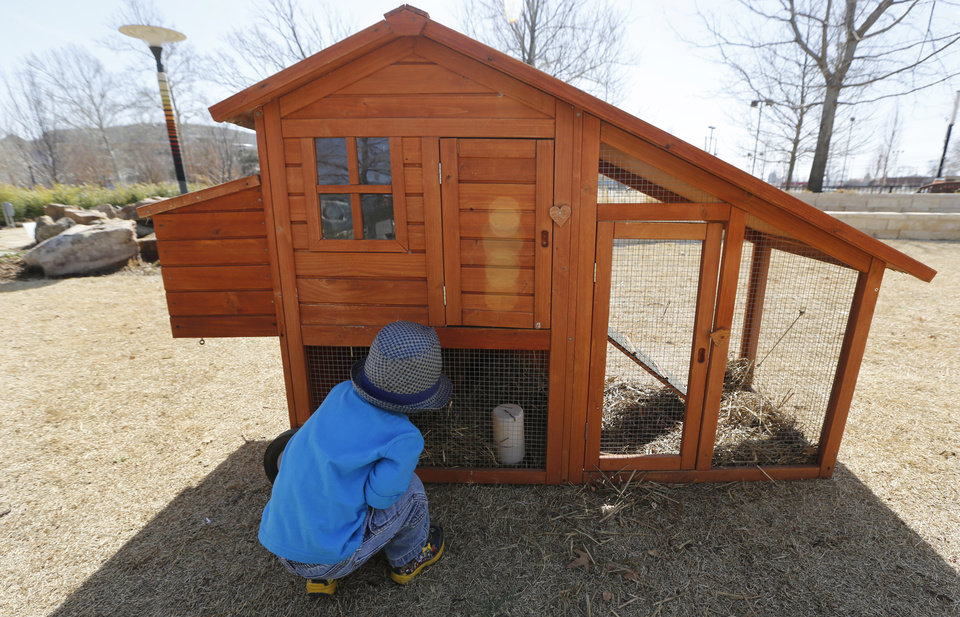 Photo - Carter, 3, looks at chickens in a portable chicken coop that was on display Friday for an urban chickens class at the Myriad Botanical Gardens in Oklahoma City.  PhotoS By Steve Gooch, The Oklahoman  Steve Gooch