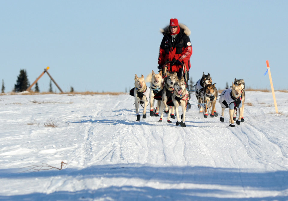 Photo - Aliy Zirkle drives her dog team across the portage from Kaltag to Unalakleet. Zirkle is the first musher to reach the Bering Sea in Unalakleet during the 2014 Iditarod Trail Sled Dog Race on Saturday, March 8, 2014. (AP Photo/The Anchorage Daily News, Bob Hallinen)