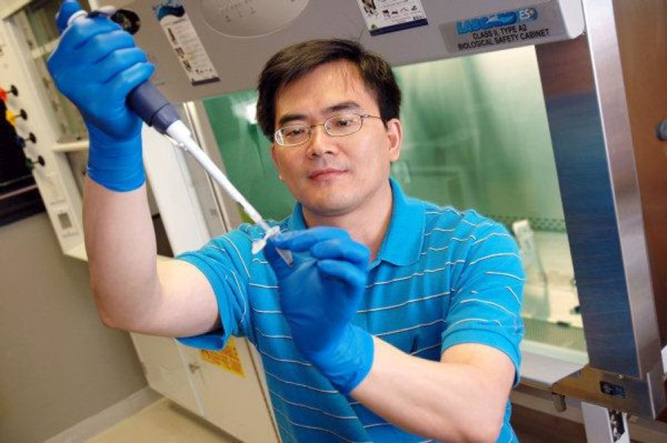 Photo - Scientist Weidong Wang works in his lab at the Oklahoma Medical Research Foundation.   - PROVIDED BY OMRF