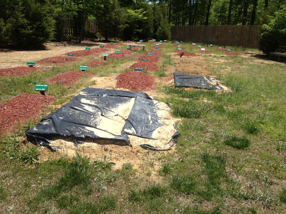 Photo - The alleged burial site of Boston Marathon bombing suspect Tamerlan Tsarnaev is covered in Doswell, Va. on May 10, 2013.  Ruslan Tsarni, the uncle of Tamerlan Tsarnaev said Tsarnaev was buried in the cemetery in Doswell, near Richmond.  Tsarnaev was killed April 19 in a getaway attempt after a gunbattle with police. His younger brother, Dzhokhar, was captured later and remains in custody.  (AP Photo/The Free Lance-Star, Robert A. Martin)