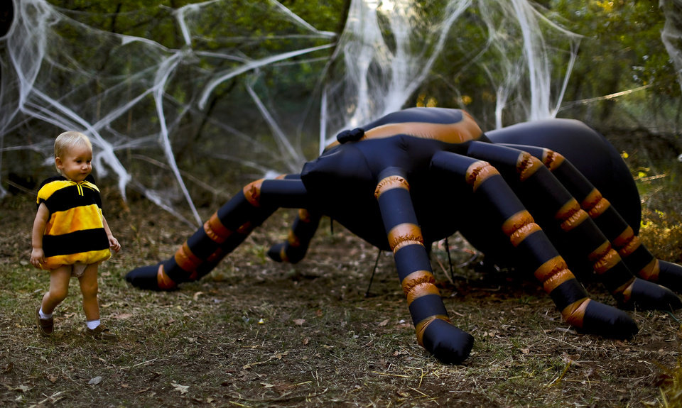 Wyatt Starck, 18 mo., walks past the giant spider during the Story book Forest at Lake Arcadia in Edmond, Okla. on Wednesday, Oct. 23, 2013.  Photo by Chris Landsberger, The Oklahoman