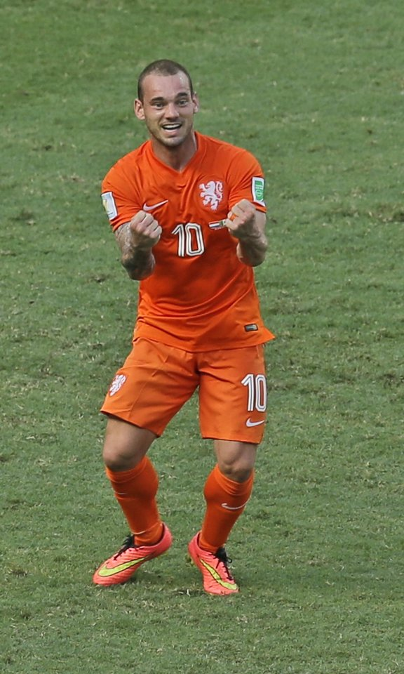Photo - Netherlands' Wesley Sneijder celebrates after the referee decided on penalty during the World Cup round of 16 soccer match between the Netherlands and Mexico at the Arena Castelao in Fortaleza, Brazil, Sunday, June 29, 2014. (AP Photo/Themba Hadebe)
