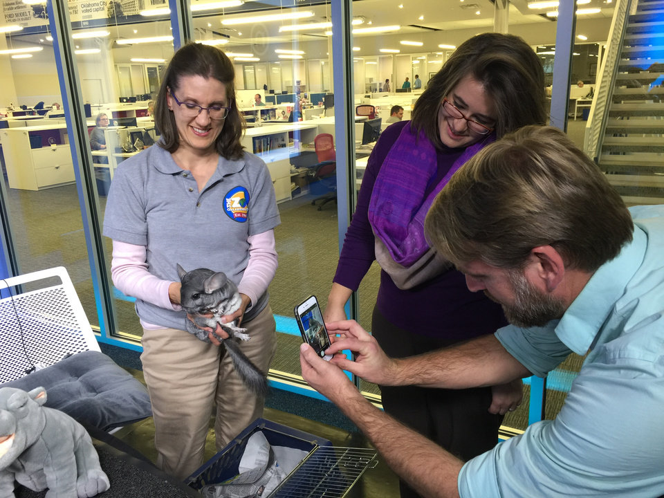 Photo - NewsOK's Greg Singleton snaps a photo of the OKC Zoo's chinchilla, held by Amy Stevens, as producer Paige Dillard supervises.