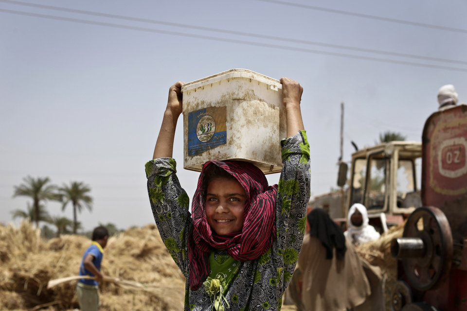 In this Sunday, May 19, 2013 photo, an Egyptian girl harvests wheat on field in Fayoum, 60 miles, (100 kilometers), south of Cairo, Egypt. Bread is perhaps the most volatile issue amid mounting economic concerns as Egyptian President Mohammed Morsi nears the end of the first year in office. In recent months, Egypt has faced fuel shortages, water and electricity cuts and rising food prices, at a time of intense political polarization between Morsi and his Islamist supporters and the mainly secular and liberal opposition. In a country where at least 40 percent of the population of 90 million lives near or below the poverty line, millions rely on cheap bread subsidized by the government. (AP Photo/Hassan Ammar)