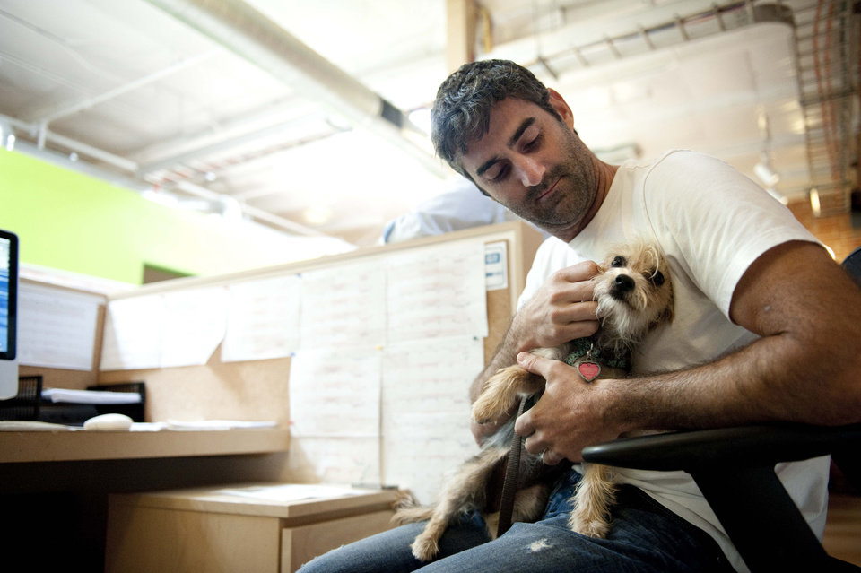 Photo -   Chris Bray scratches his dog Rila, a Yorkshire Terrier mix, while at work at Authentic Entertainment in Burbank, Calif., Monday, June 11, 2012. Rila is one of millions of dogs that accompany their owners to dog-friendly businesses across the country every day. Even more will join her next Friday for Take Your Dog to Work Day. (AP Photo/Grant Hindsley)