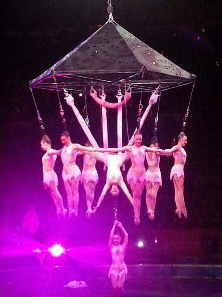 Photo - In this photo provided by Frank Caprio, performers hang during an aerial hair-hanging stunt at the Ringling Brothers and Barnum and Bailey Circus, Friday, May 2, 2104, in Providence, R.I. A platform collapsed during an aerial hair-hanging stunt at the 11 a.m. performance Sunday, May 4, sending eight acrobats plummeting to the ground. At least nine performers were seriously injured in the fall, including a dancer below, while an unknown number of others suffered minor injuries. (AP Photo/Frank Caprio) MANDATORY CREDIT