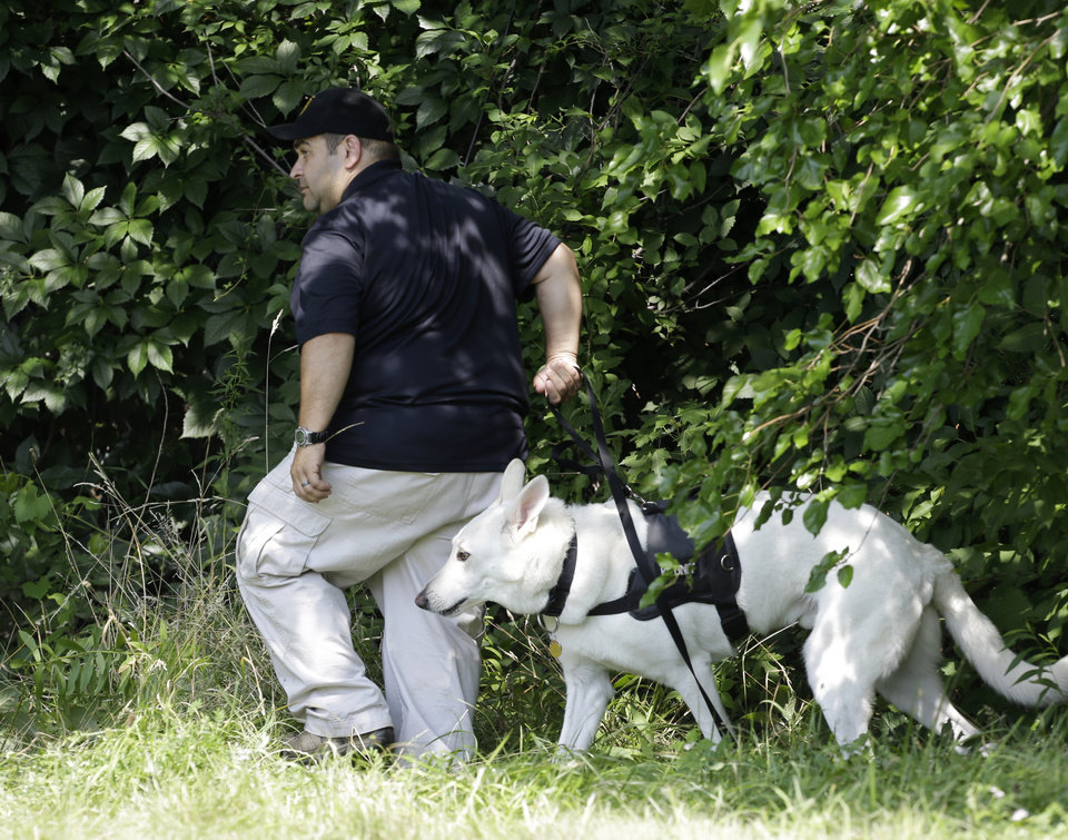 Photo - An investigator and his  dog search a wooded area Sunday, July 21, 2013 near where three bodies were recently found in East Cleveland, Ohio. Searchers rummaging through vacant houses in a neighborhood where three female bodies were found wrapped in plastic bags should be prepared to find one or two more victims, a police chief said Sunday. (AP Photo/Tony Dejak)
