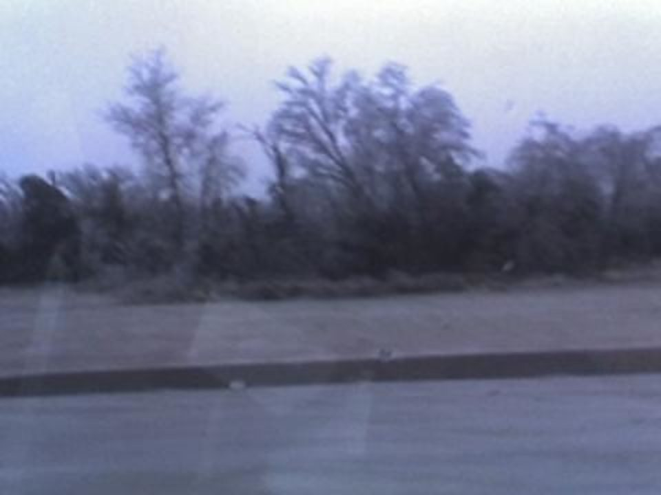 More ice damage in MWC<br/><b>Community Photo By:</b> Robert Fuller<br/><b>Submitted By:</b> Robert, Midwest City