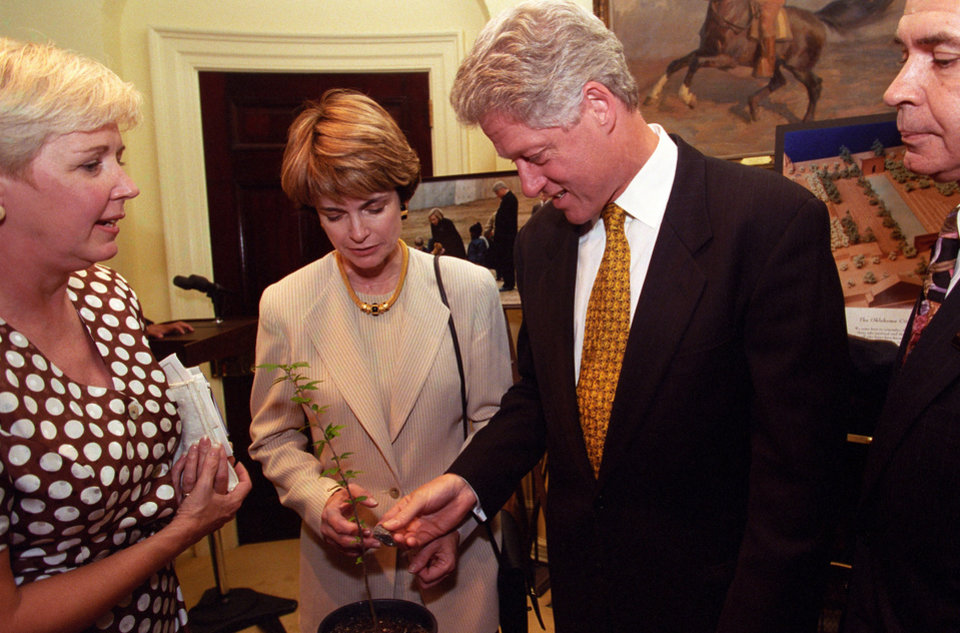 Photo - In this photo, taken Aug. 13, 1997, President Bill Clinton is pictured with a seedling from Oklahoma City's Survivor Tree. Photo povided by Clinton Presidential Library