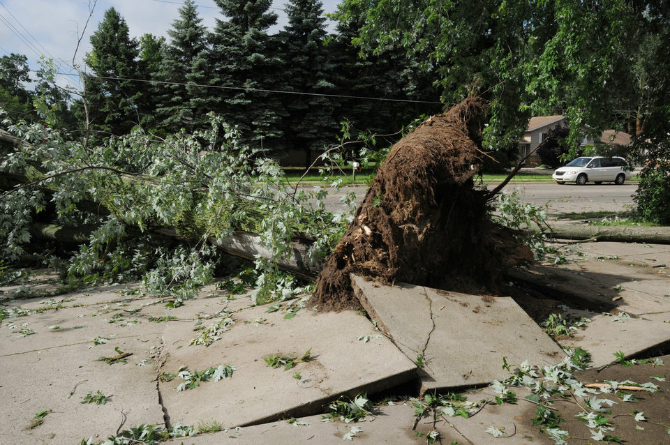 Photo - This photo shows an uprooted tree after a storm in St. Joseph Township, Mich., Tuesday, July 1, 2014. Severe thunderstorms packing high winds knocked down trees and power lines across parts of Michigan, leaving more than 230,000 without power and injuring a firefighter. (AP Photo/The Herald-Palladium, Don Campbell)